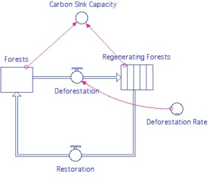 Deforestation model and its effect on the carbon sink