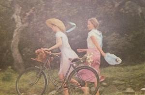 david-hamilton bicycle 1