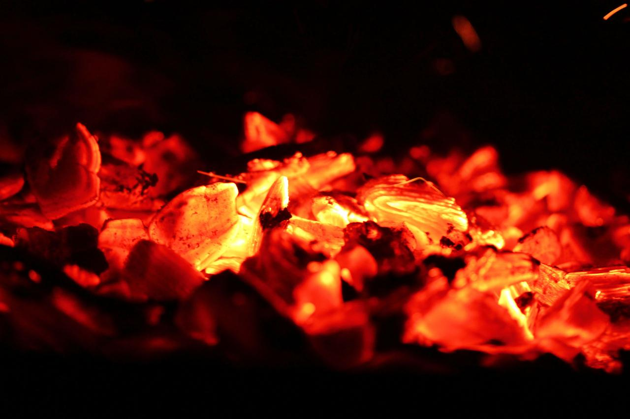 glowing of such fire, That on the ashes of his youth doth lie