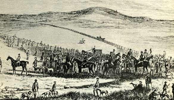 Plumpton coursing began in Victoria in 1881