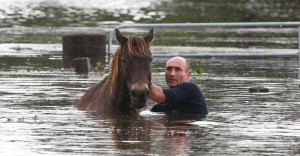A man rescues his horse in the  worst-ever New South Wales floods