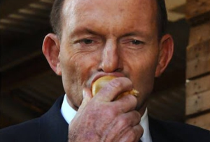 Tony Abbott brought down by opinion polls not onions