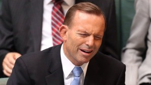 Tony Abbott: another dud Royal Commission