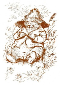 The Adventures of the Muddle-Headed Wombat  002.jpg