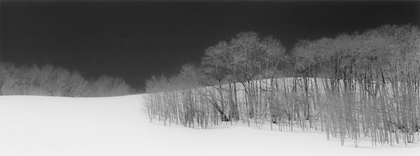 snowyrid600